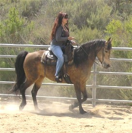 Kate under saddle